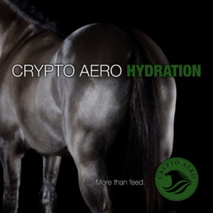 Crypto Aero Hydration